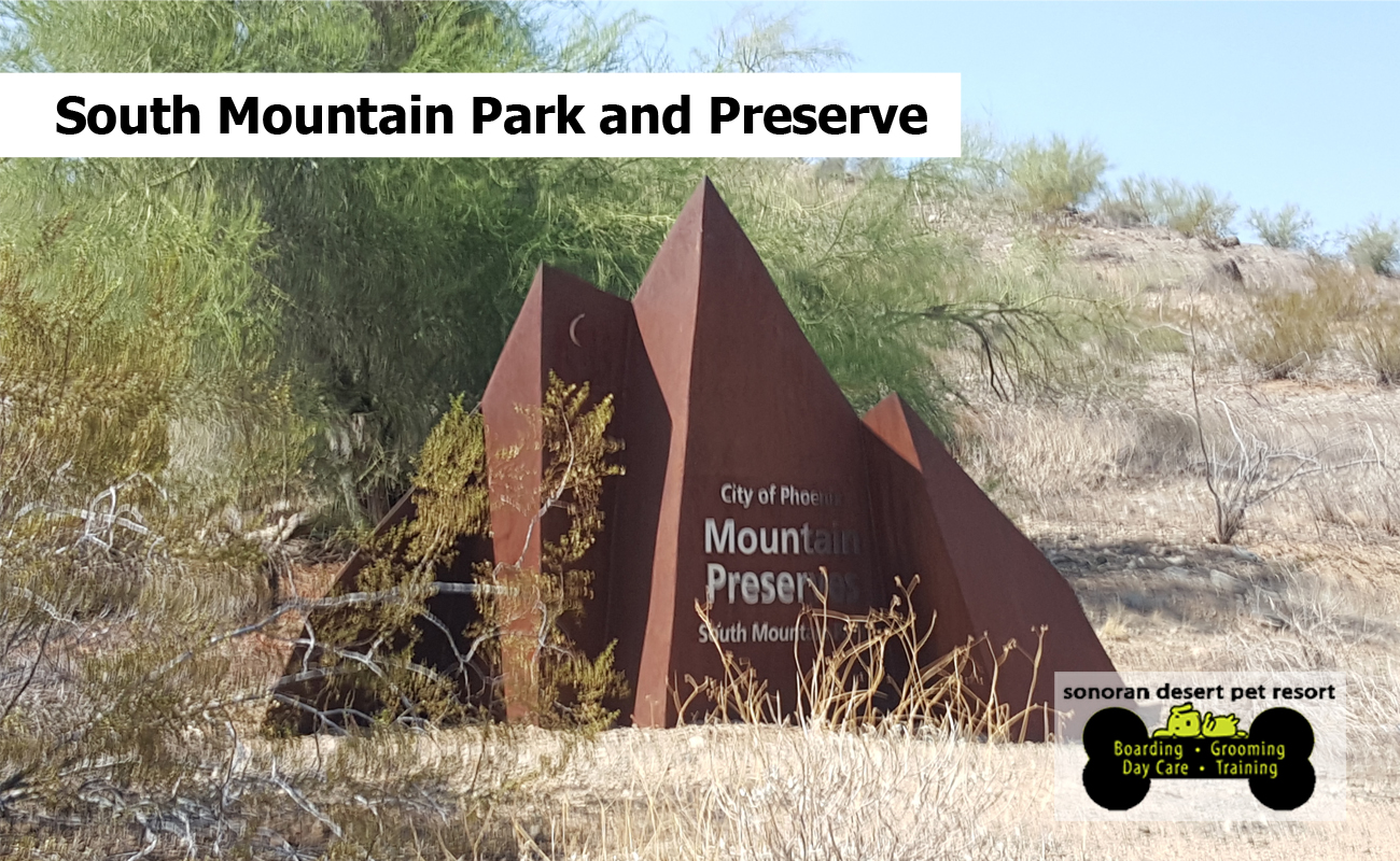 South Mountain Park and Preserve